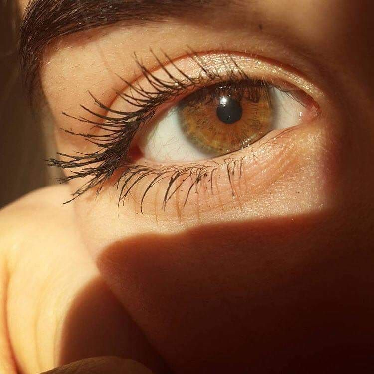 Honey Eyes Are The Best Change My Mind Honeyeyes Eyes