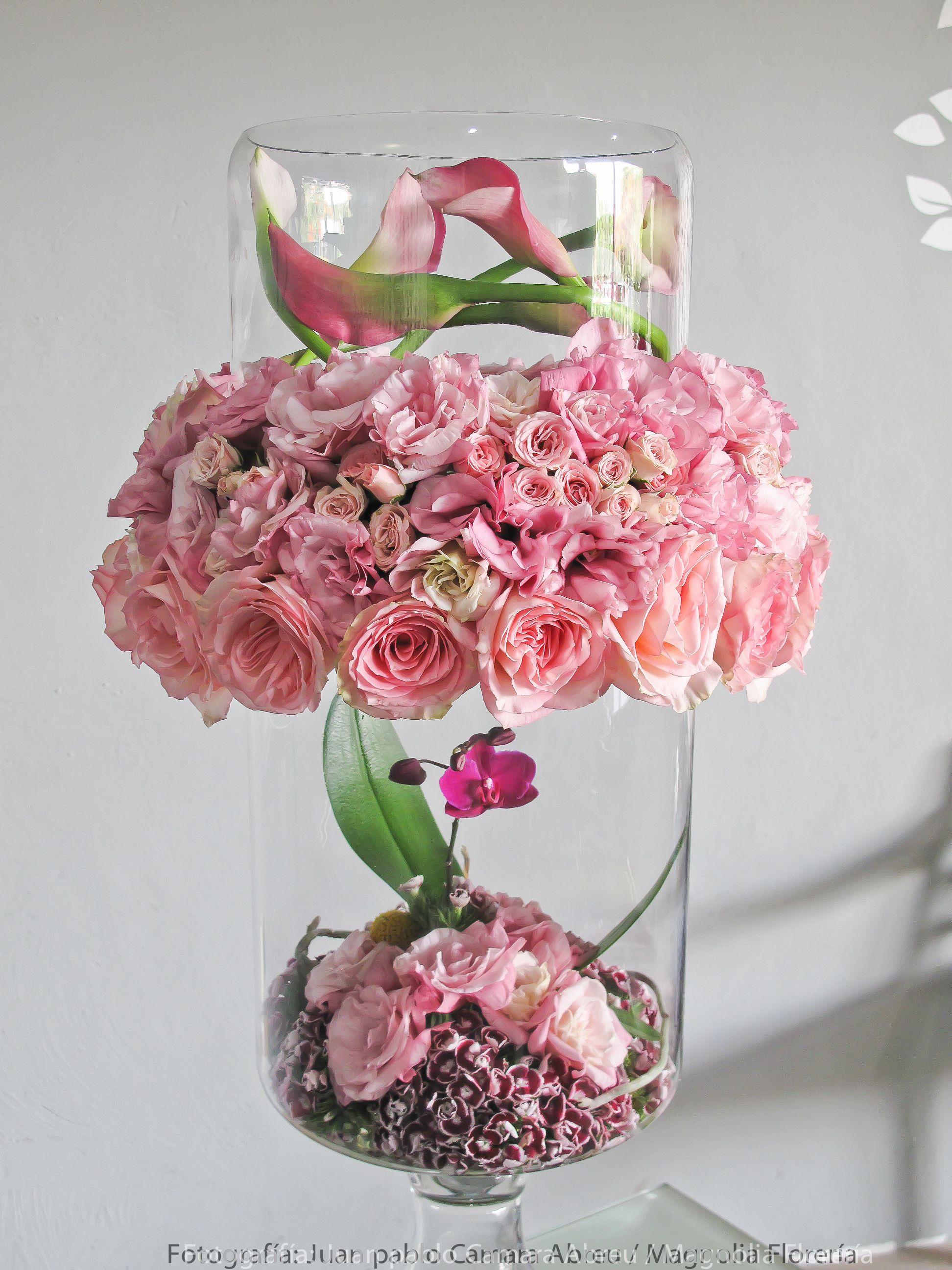 Pink Flower Arrangement By Juan Pablo Cmara Abreu Magnolia