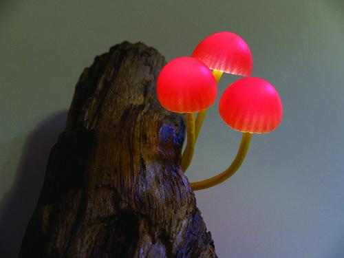 坂井直樹の デザインの深読み 画像あり キノコ デザイン 菌類