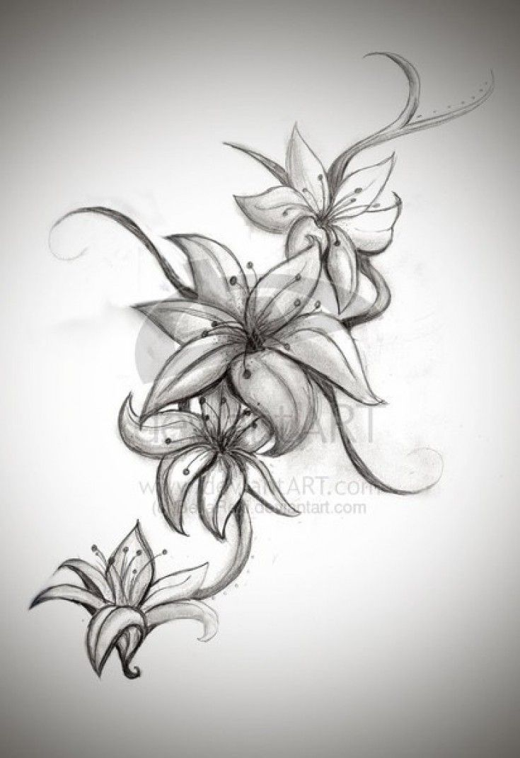 Image result for daisies and butterflies tattoo tattoos image result for daisies and butterflies tattoo lily flower izmirmasajfo Choice Image