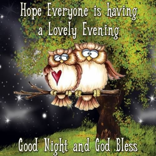 Hope Everyone Is Having A Lovely Evening Goodnight Good Night Lovely Good Night Good Night Blessings