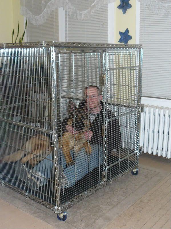 German Shepherd Dog Forums Crate