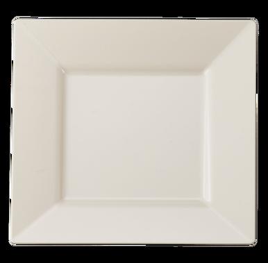 9.5  Square Bone Plastic Dinner Plates. Posh ProductsPaper ...  sc 1 st  Pinterest & 9.5