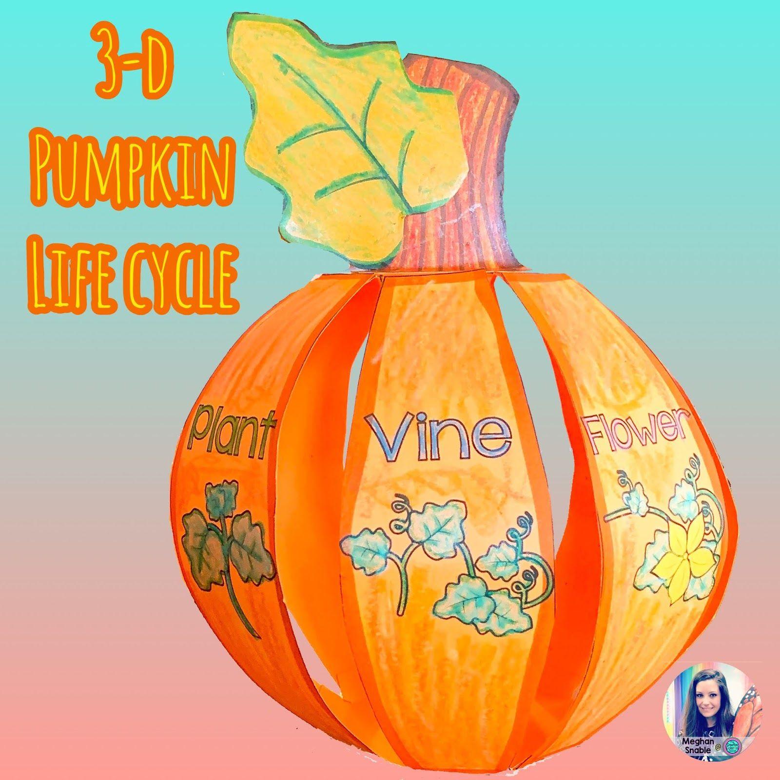 3 D Pumpkin Life Cycle Fall Activities