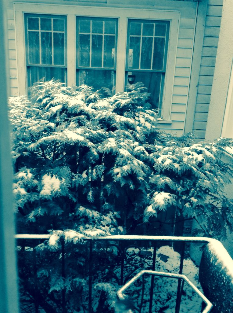 Surprise Victoria Day long weekend Snow