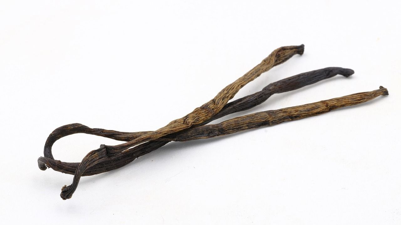 Vanille Anbau Herkunft Und Verwendung Vanillesirup Vanille Und Sirup