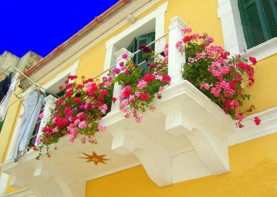 Ideen Balkonpflanzen Auf Der Terrasse Gelbe Fassade