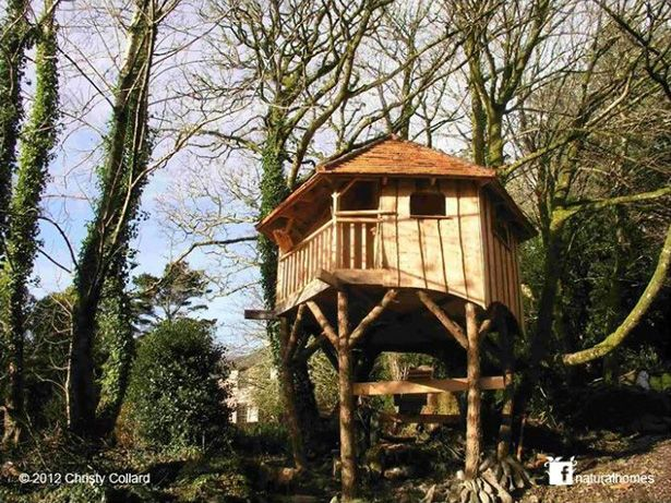 Casas en los árboles alrededor del mundo casas árboles Pinterest - casas en arboles