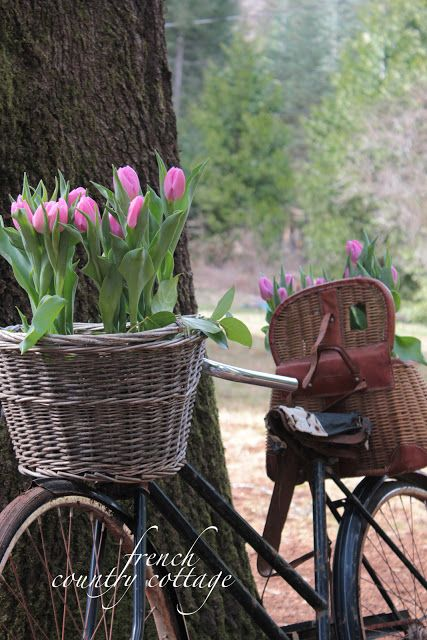 FRENCH COUNTRY COTTAGE: Vintage Bicycle Planter Oh How I Love This Look!