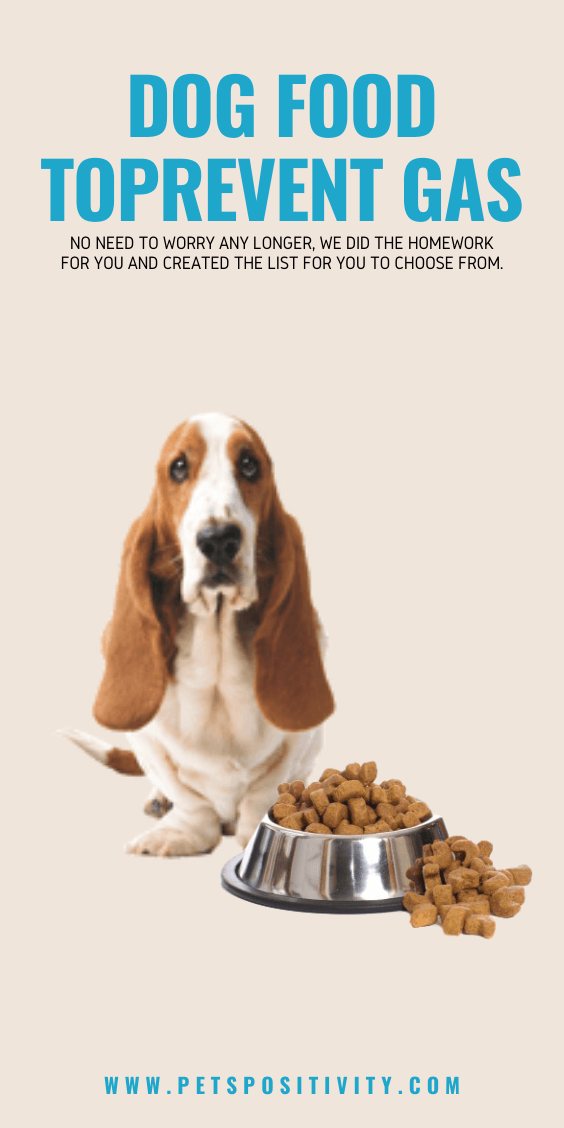 NO FART DOG FOOD: BEST DOG FOODS TO PREVENT GAS IN 2020