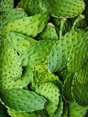 Healthy Mexican Recipe! Ensalada de Nopales   ¿Qué Más?