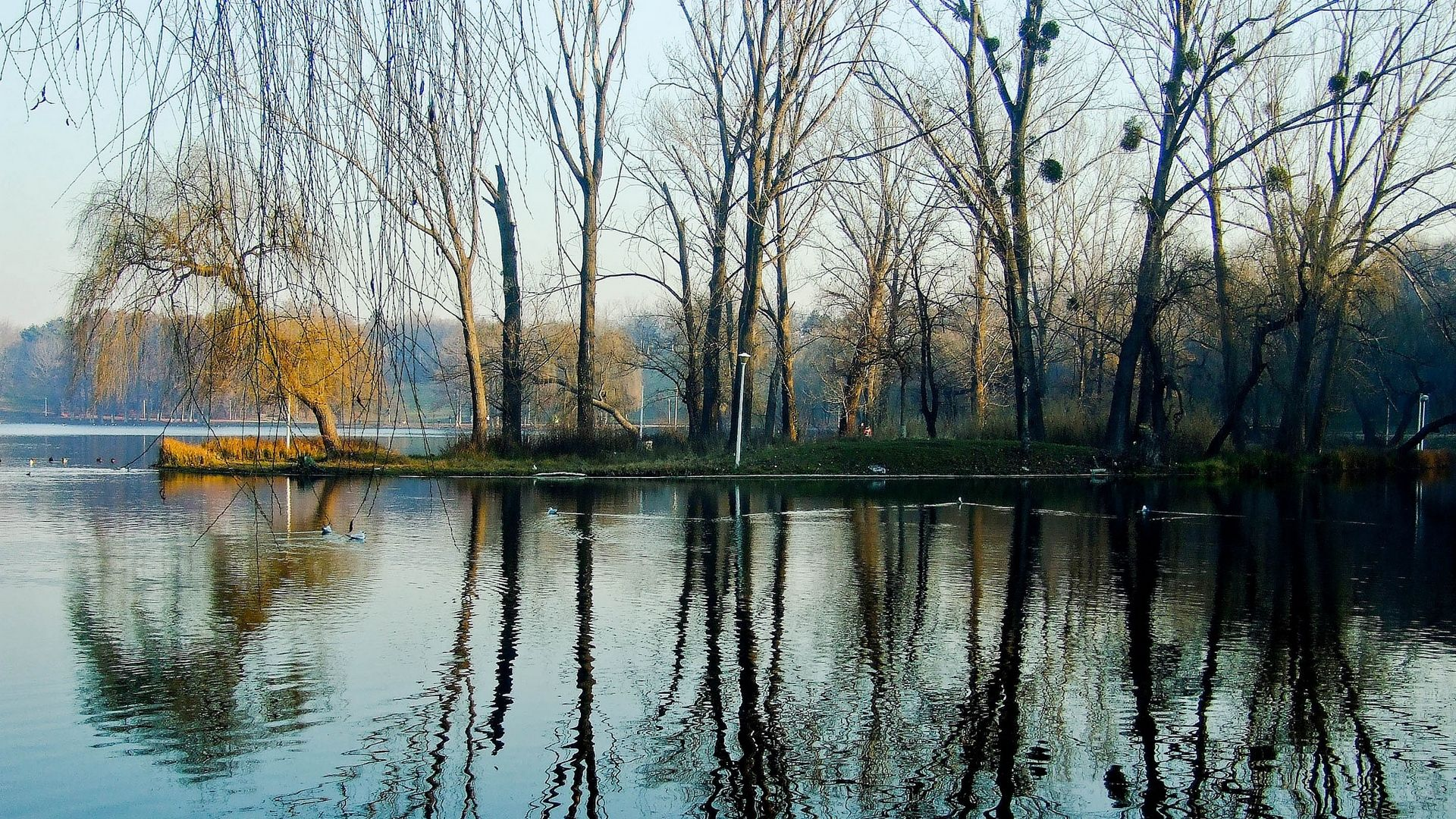 Обои Пейзаж, Весна, Вода. Города foto 16