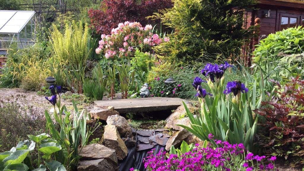 Image result for highland scotland garden Garden