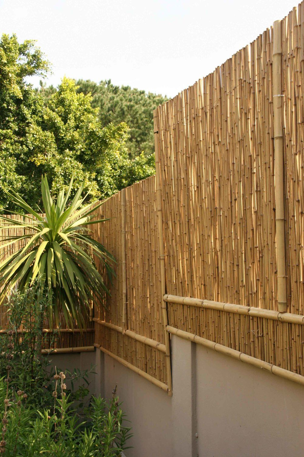 Image result for heighten fence for privacy pool pinterest bamboo rolled fencing with internal galvanized steel wire baanklon Gallery