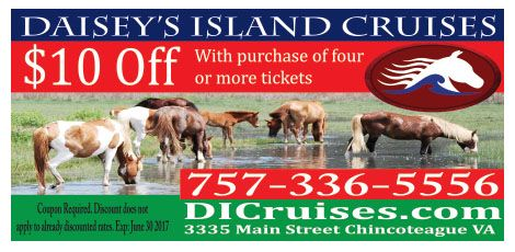 Save 10 Off With Purchase Of Four Or More Tickets At Daisey S Island Cruises Of Chincoteague Island Va It S Suppose Sunset Cruise Chincoteague Island Cruise