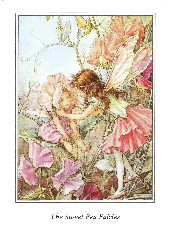 Original colour print of an early Flower Fairies print. This is an ...
