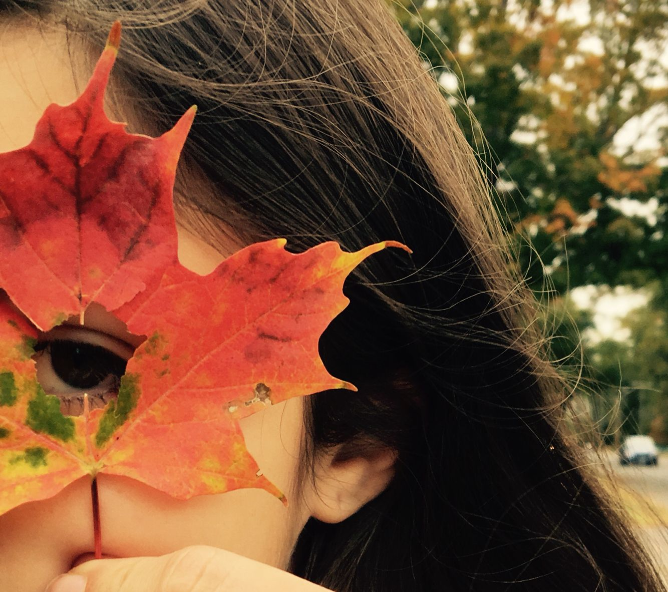 cute fall photography🍂