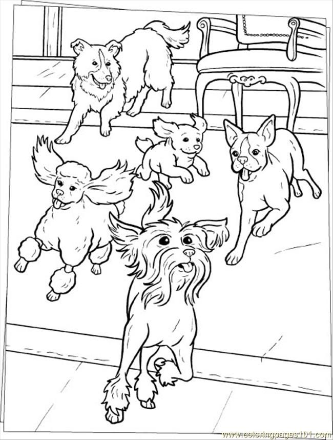 Pin By Marcia On Color Cats Dogs Dog Coloring Page Horse Coloring Pages Dog Coloring Book