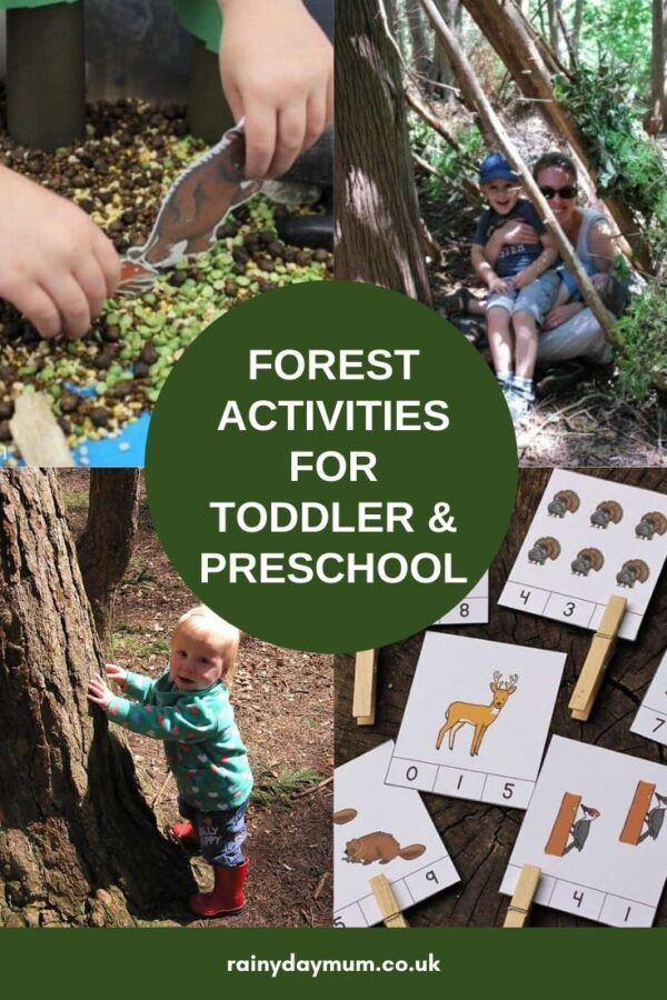 Forest Themed Activities for Toddlers and Preschoolers in