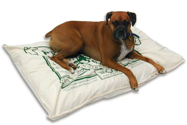 Small Snooza D1000 Dog Bed With Images