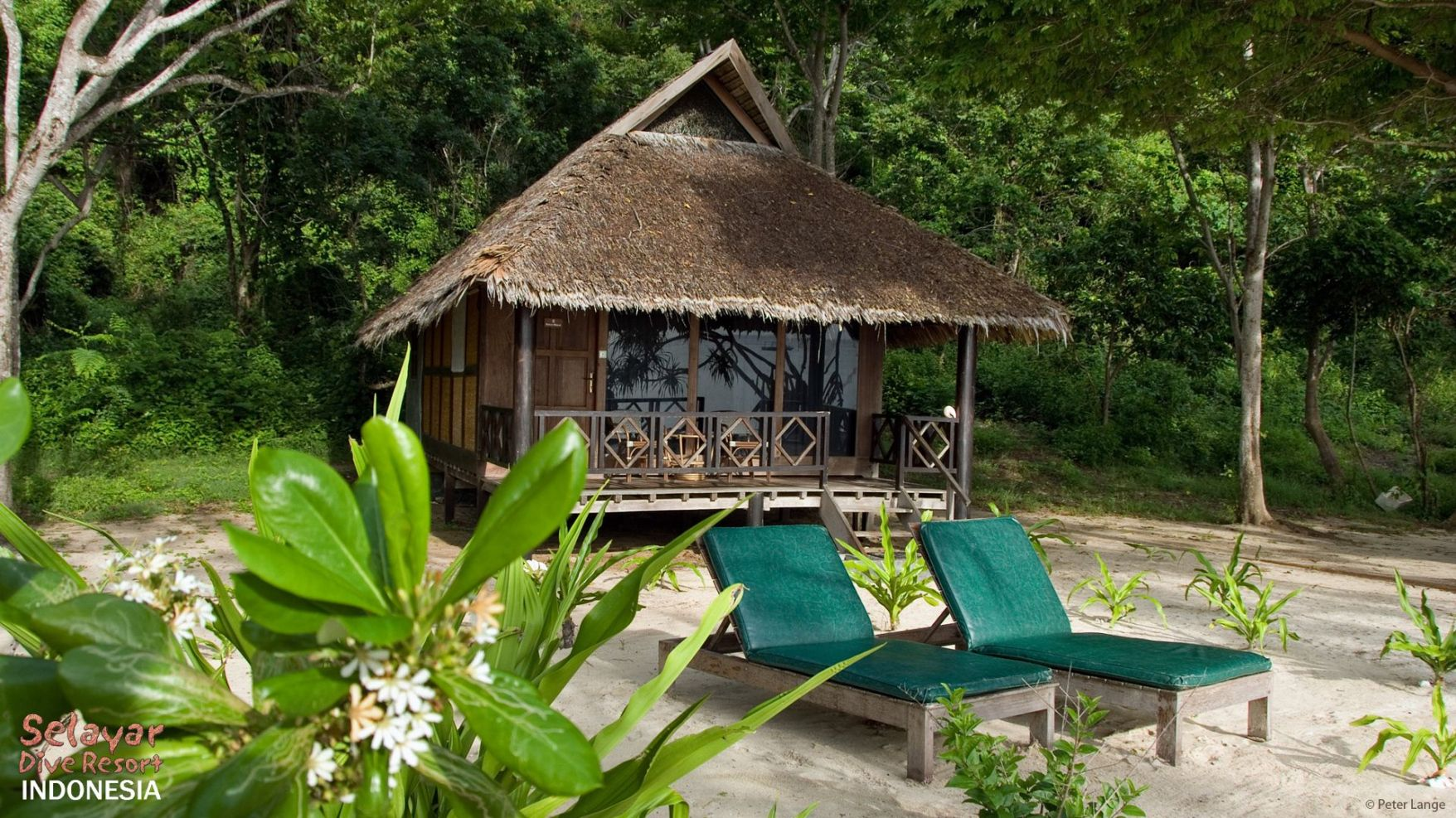 Lovely Private Beach Bungalows Check More At Http Www Jnnsysy