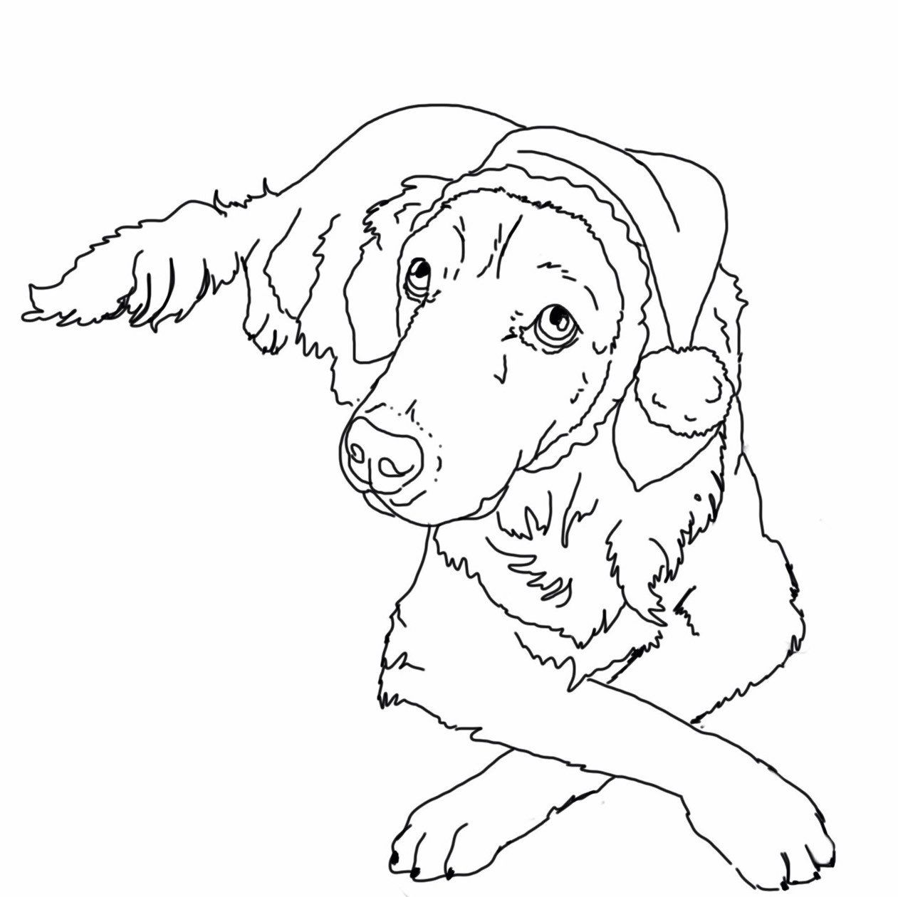 Elf Hat For Dogs Dog Elf Hat Holiday Dog Hat Christmas Hat Etsy Christmas Coloring Pages Christmas Coloring Sheets Disney Coloring Pages