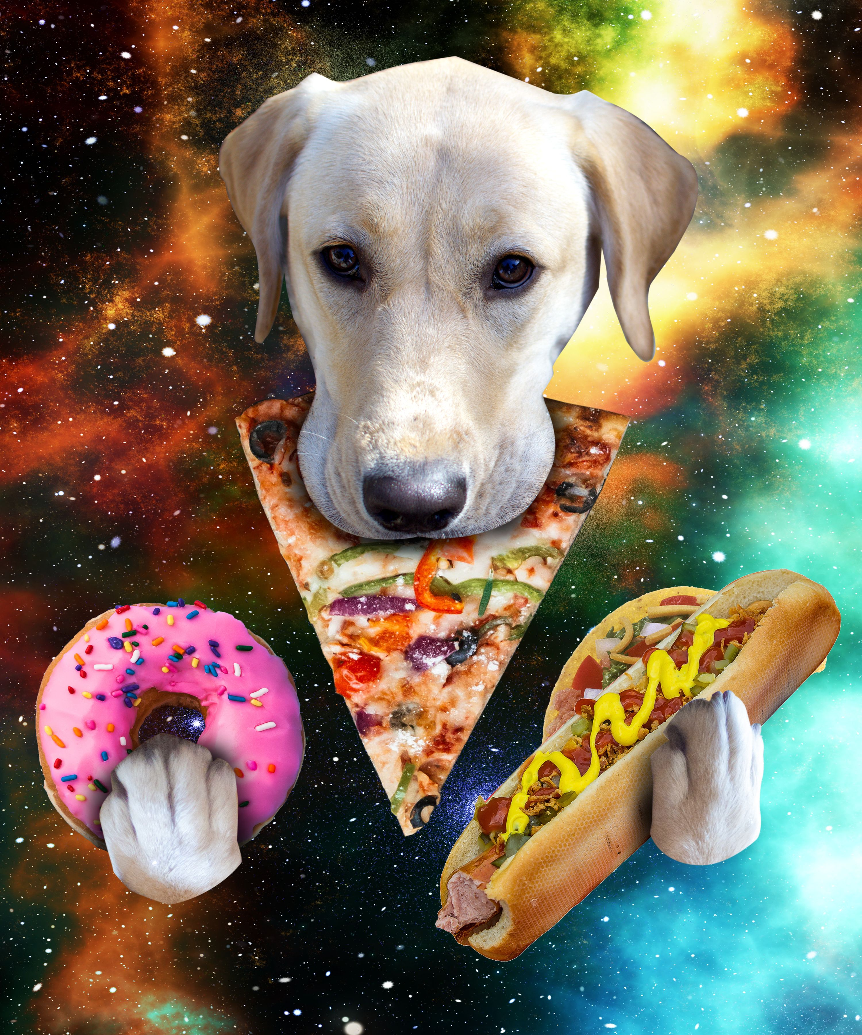 Dog Eat Pizza Food In Space Shirt Funny Gift For Dog Lover Dog