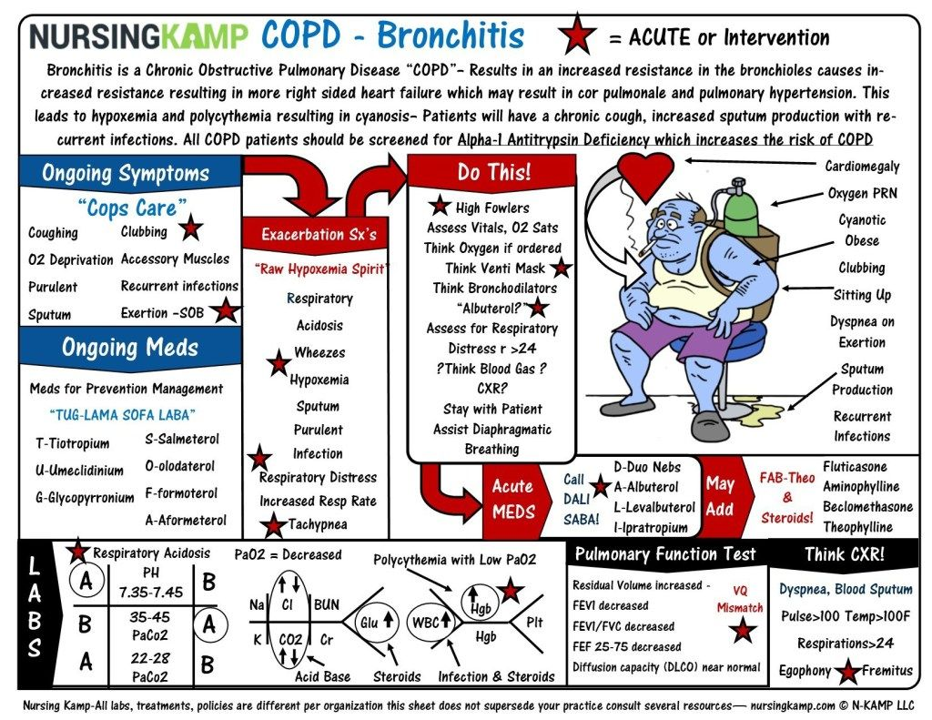 COPD Blue Bronchitis Emphysema Nursing Clinical School ...