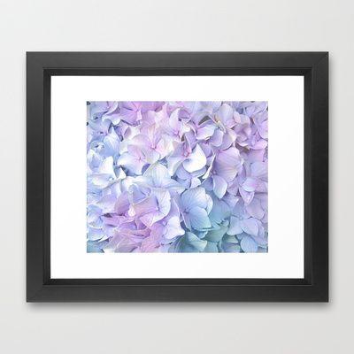Soft Pastel Hydrangea Framed Art Print by Judy Palkimas - $35.00