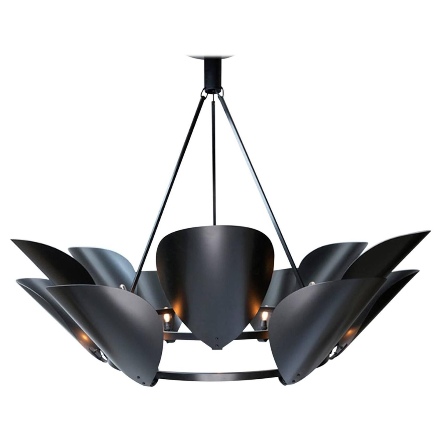 Black brass powdered coated petal chandelier more chandeliers ideas