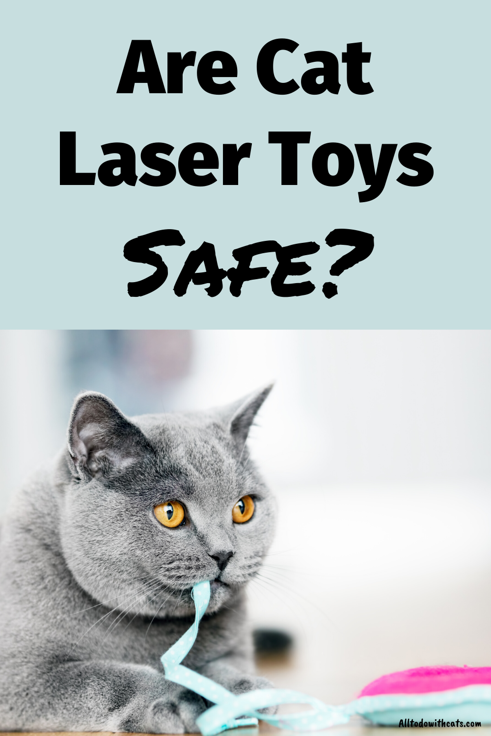 Why Do Cats Love Laser Pointers And Chasing The Red Dot In 2020 Cat Laser Toy Cat Laser Cat Love