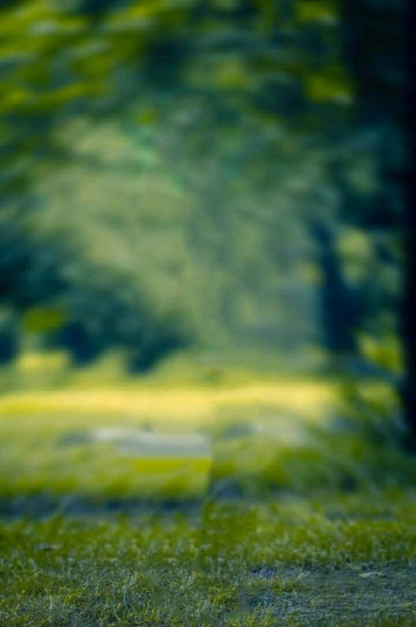 New Natural Backgrounds For Photo Editing Blur Photo Background Blur Image Background Blur Background Photography