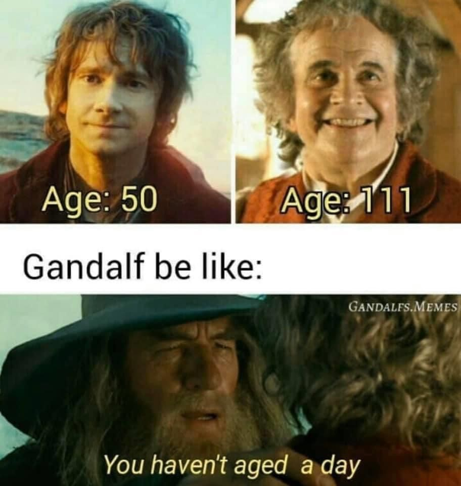 Pin By Mary Ann On Best Lotr Memes In 2020 Memes Lotr Movie Posters
