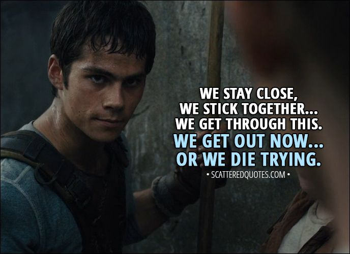 10 Best 'The Maze Runner' Quotes (2014