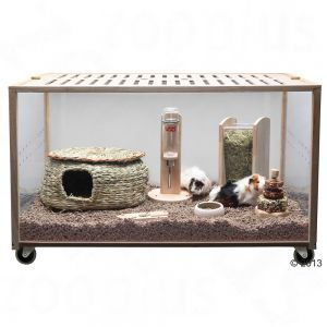 This Hamster Cage Is The Living World Green Eco Habitat Made By