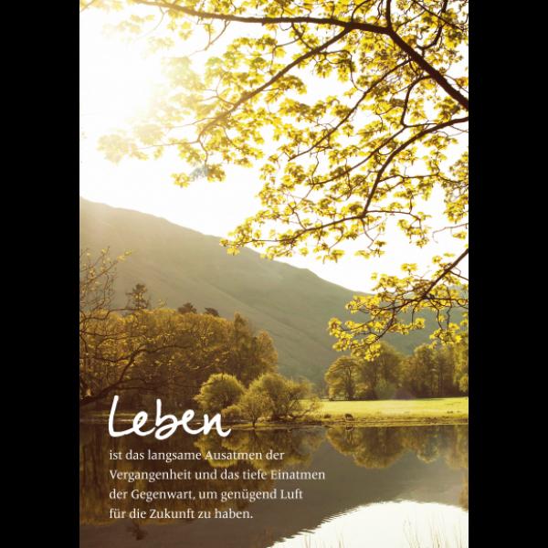 Leben/Bild1