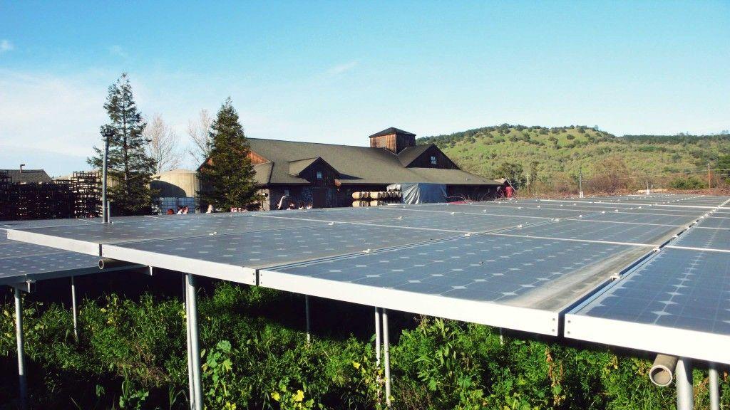 Sunshine For Solar Panels And Vineyards Solar Solar Panels Winery Tours