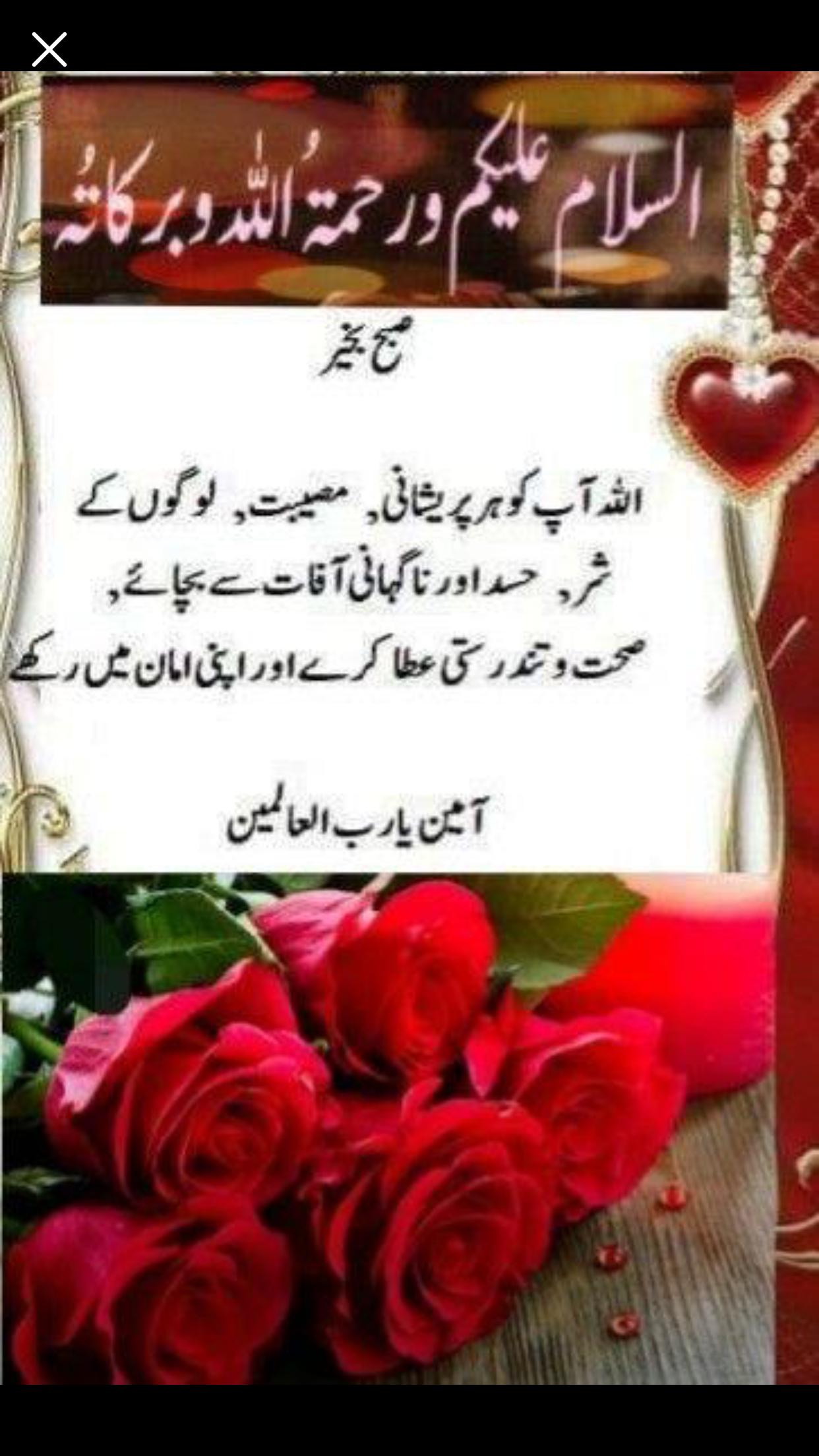 Pin By Shaheen Perwaz On Morning Duas Beautiful Morning Messages Morning Prayer Quotes Good Morning Flowers