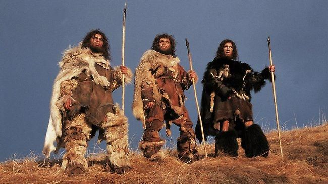 Caveman Outfit Ideas : Realistic caveman costumes fall thanksgiving halloween