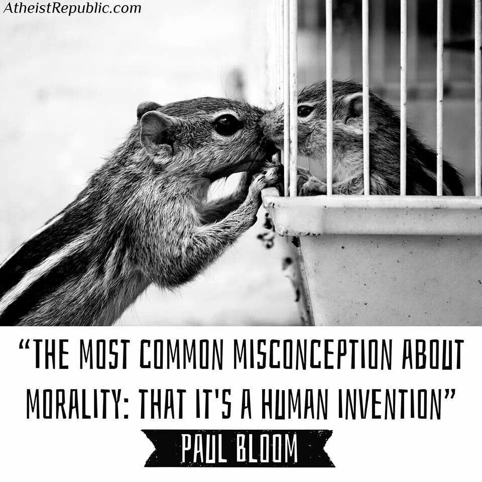 Animal Rights Quotes Pinroshni Lajja On Quotes  Pinterest  Animal Cruelty