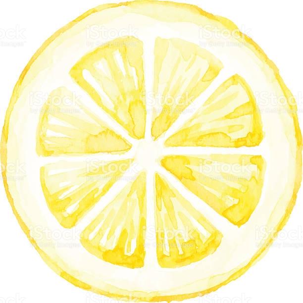 Google Image Result For Https Media Istockphoto Com Vectors Watercolor Lemon Slice Vector Id629822652 B 1 K 6 M 629 Lemon Painting Lemon Art Lemon Watercolor