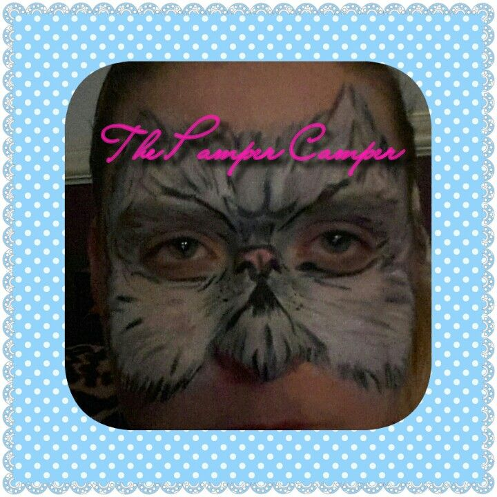 Cat face painting  half mask