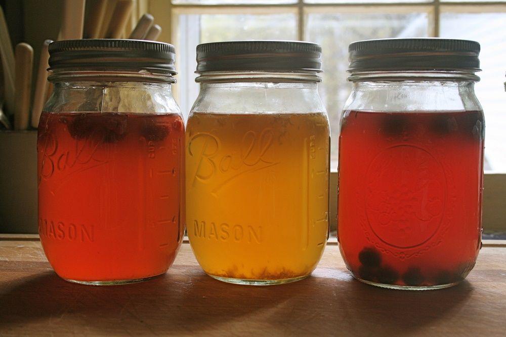 kombucha maison differentes saveurs fruits gingembre herbes fraiches