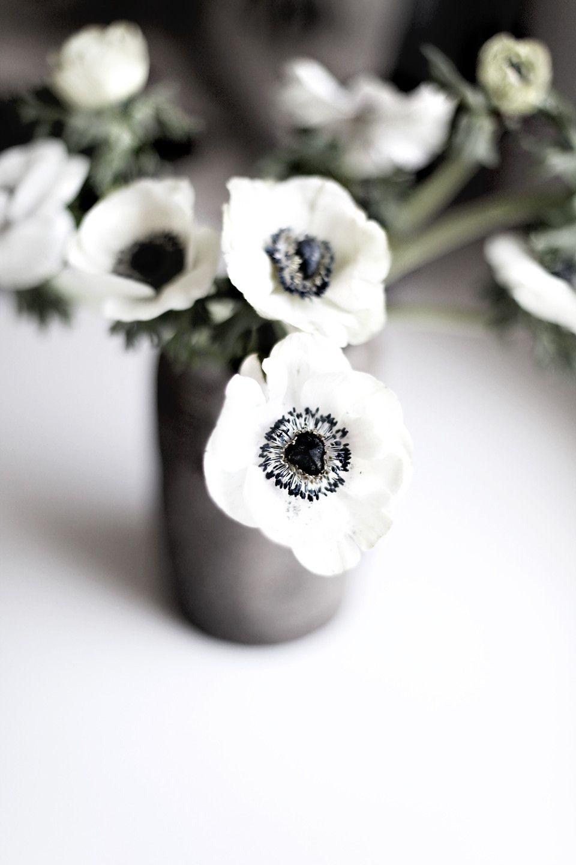 Anemones Black White Weddings Www Indyweddingideas Com Bride Wedding Inspiration Groom Flowers Nature Anemone White Flowers
