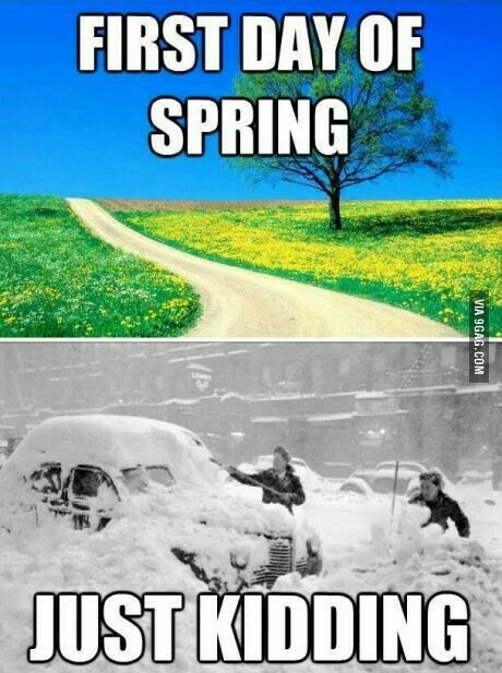 Pin By Girlgamer Animefan On By The Way Weather Memes Spring Funny First Day Of Spring