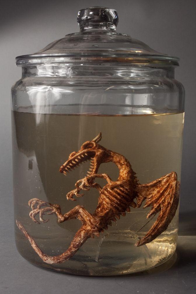 dragon specimen