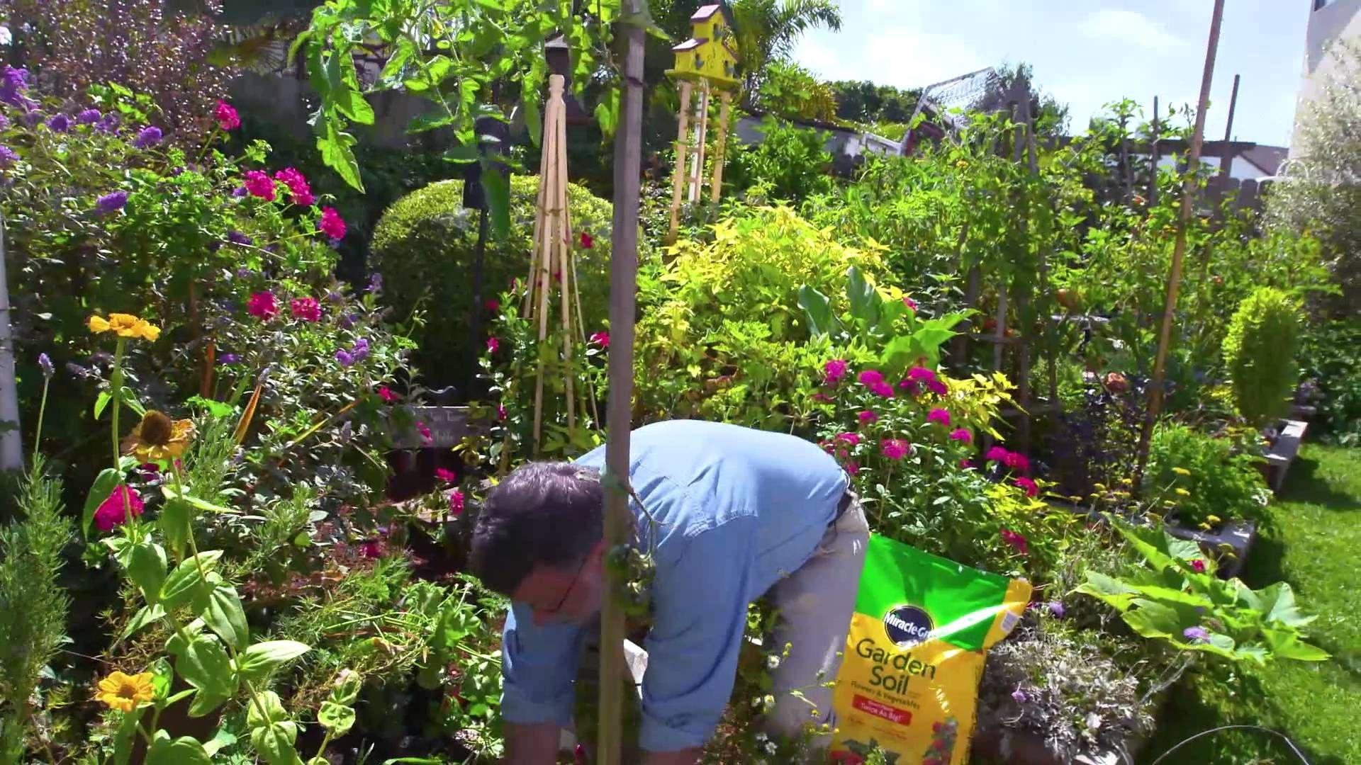 In Ground Gardening With Ashton Ritchie Ace Hardware Garden