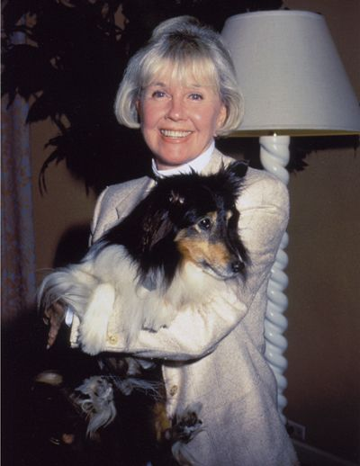 Image result for doris day holding an animal