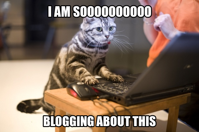 Image result for blogger meme