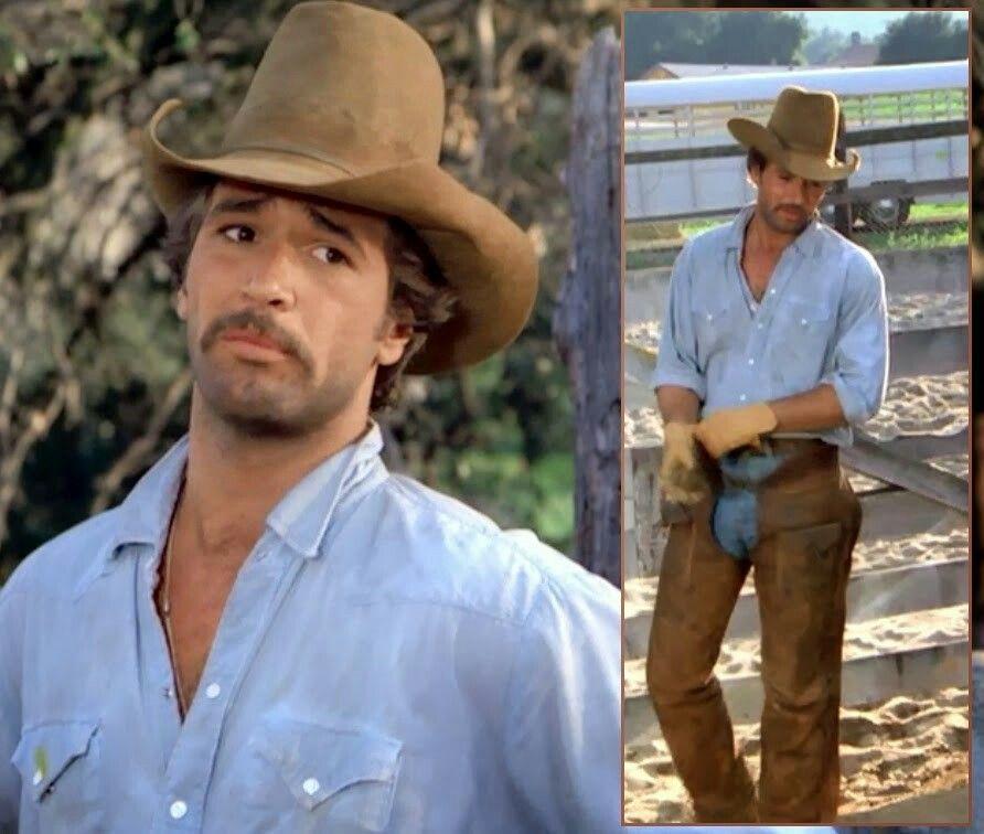 Lee Horsley | Lee Horsley | Lee horsley, Cowboy hats, Real ...